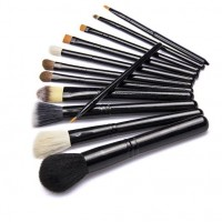 Professional 12 pcs Makeup Brush Set with Beige Environmental Case
